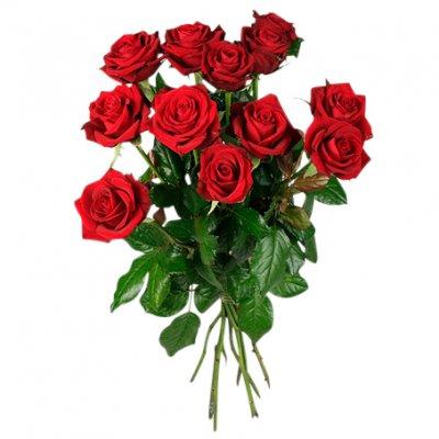 vad betyder 10 röda rosor